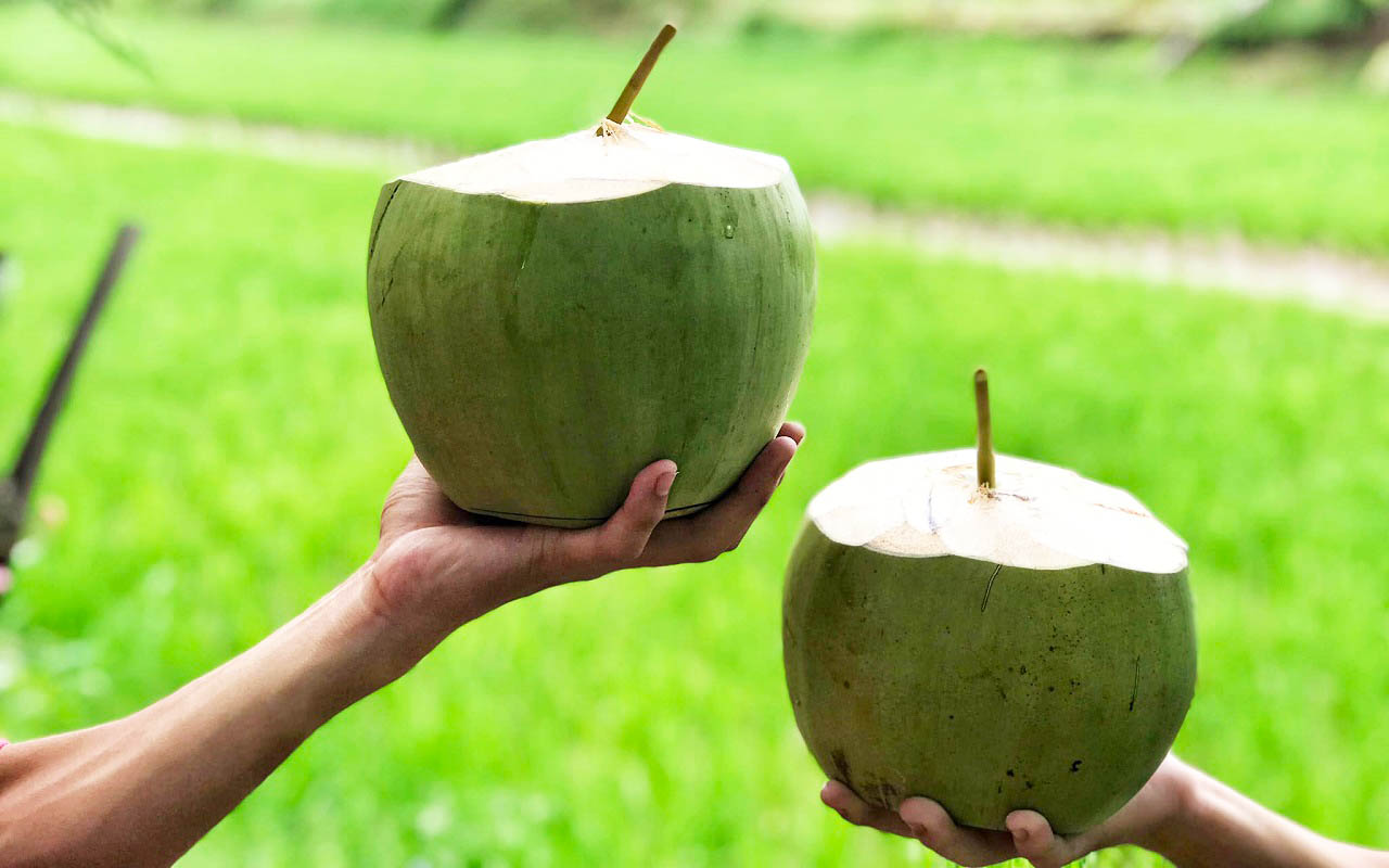 Uống dừa tươi bằng ống hút thân thiện với môi trường