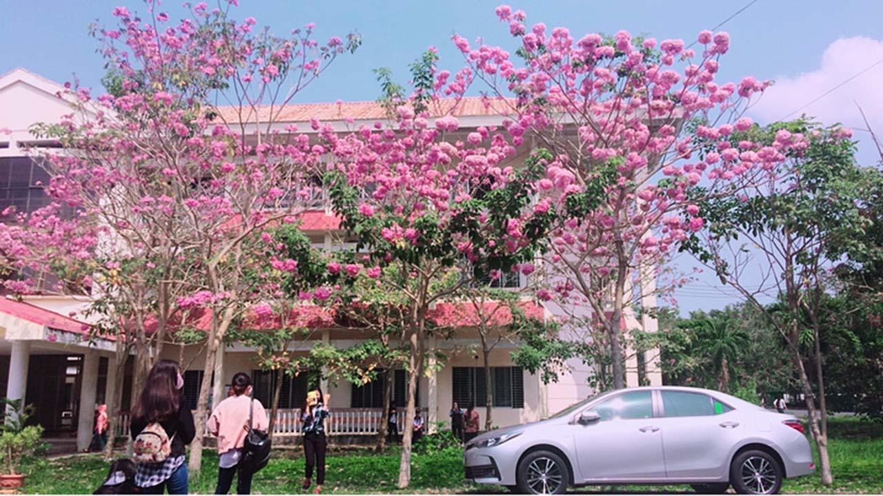 Check In Đại học Cần Thơ