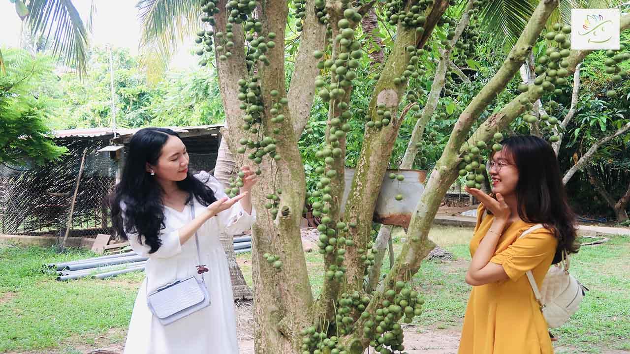 Chup Anh Cung Cay Dau Da