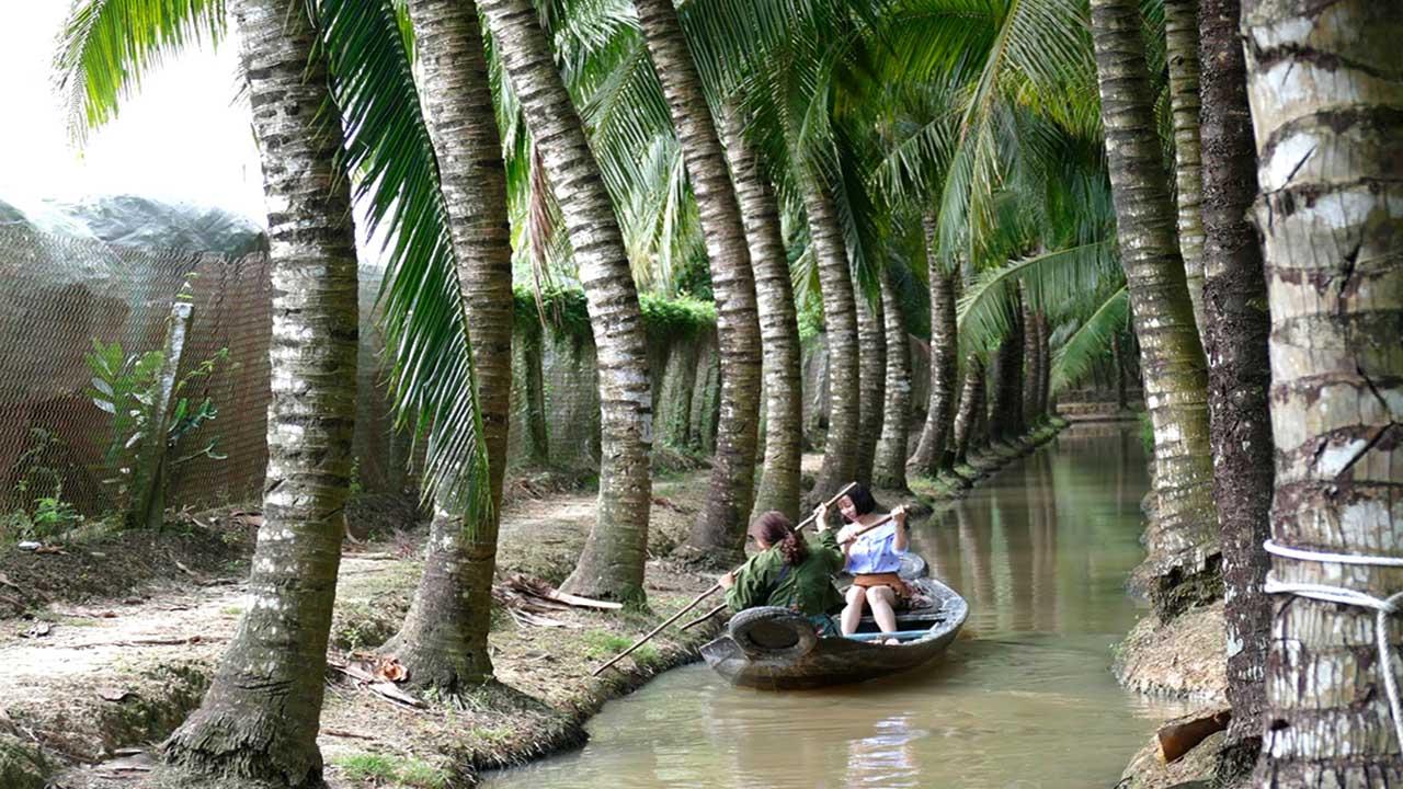 Du khách bơi xuồng trong vườn dừa trong cù lao Tân Lộc