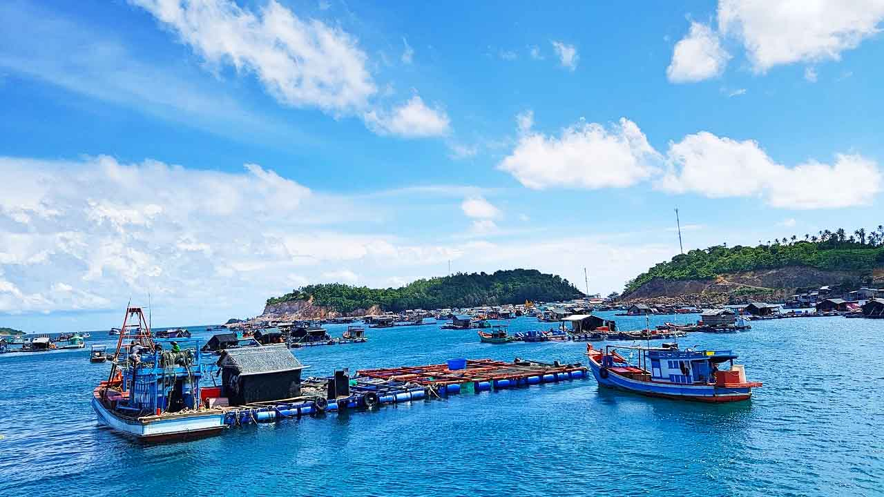 Tham quan làng cá bè Hòn Sơn - Tour Cần Thơ Hòn Sơn 2 ngày 1 đêm