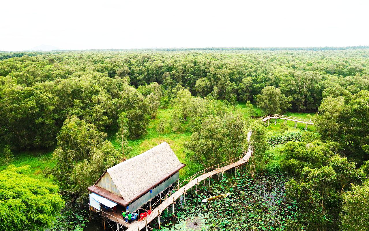 Toàn cảnh rừng tràm Trà Sư từ trên tháp chim