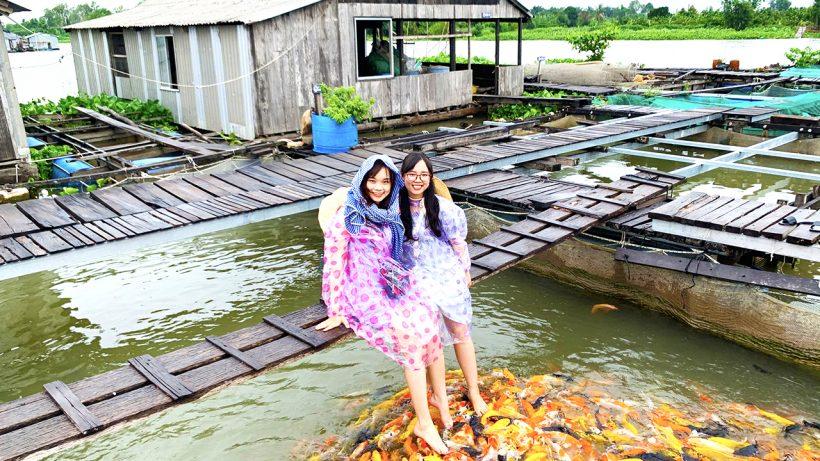 Tour Cồn Sơn