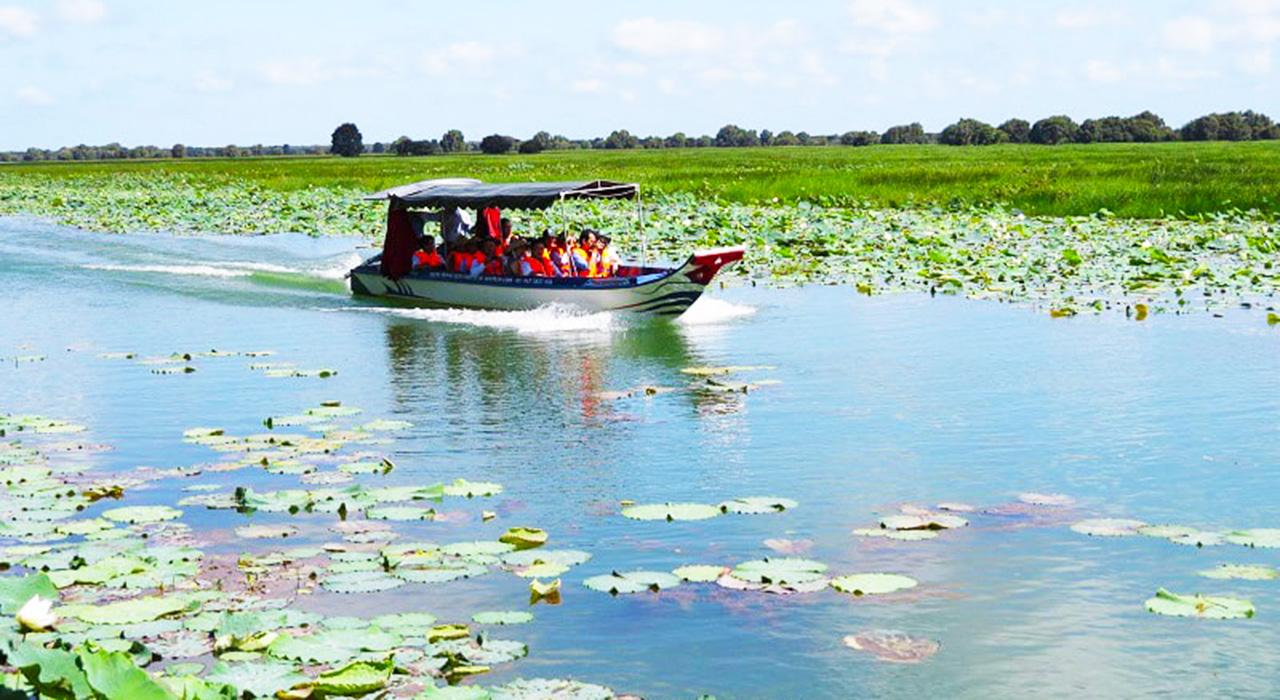 Đi tàu tham quan vườn quốc gia Tràm Chim - tour Tràm Chim ngày từ Cần Thơ