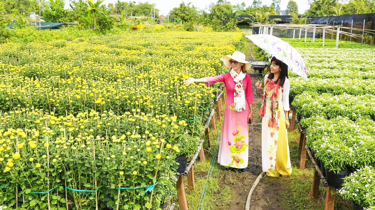 Đi dạo làng hoa Sa Đéc với nhiều loài hoa đua nhau khoe sắc