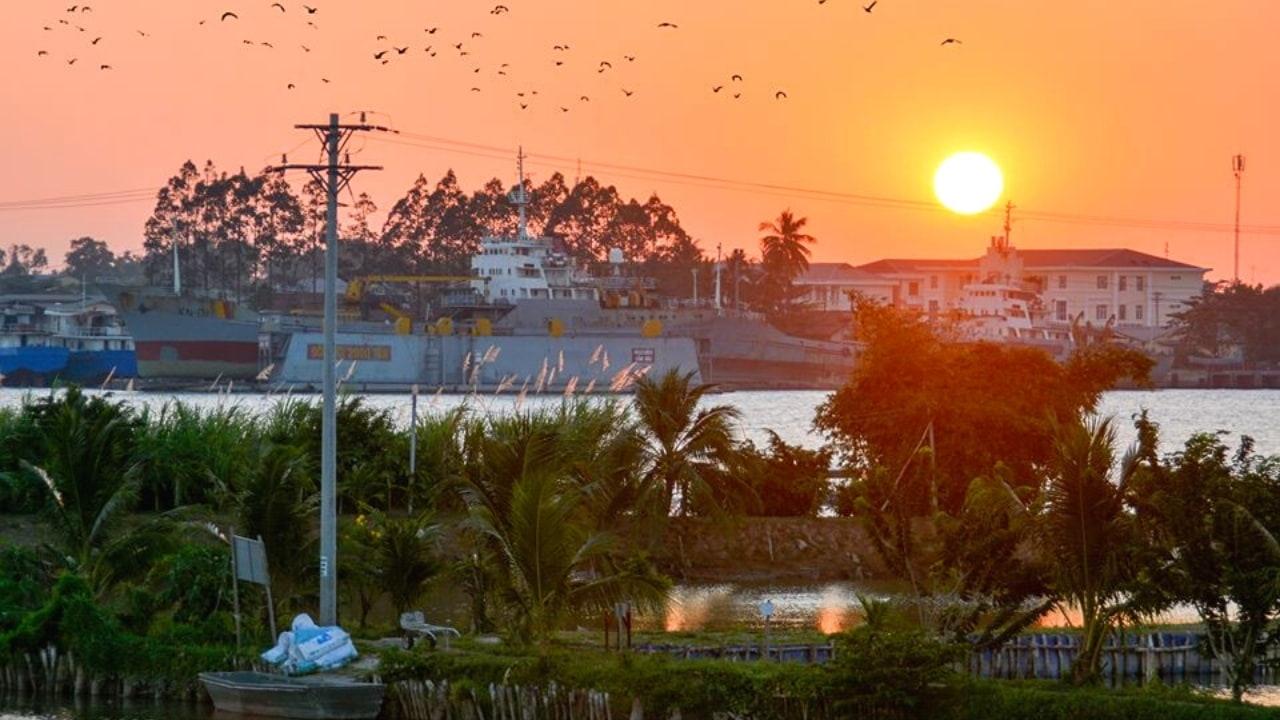 Vườn cò Cồn Sơn
