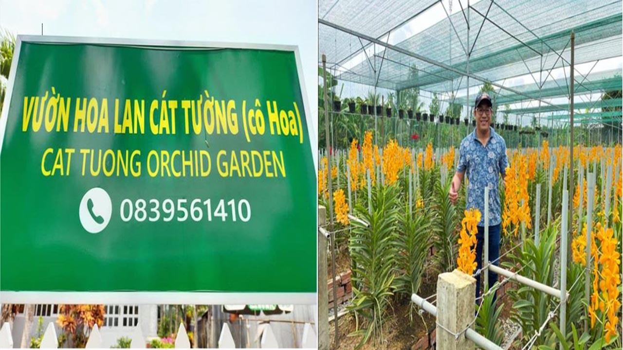 Vuon Lan Cat Tuong