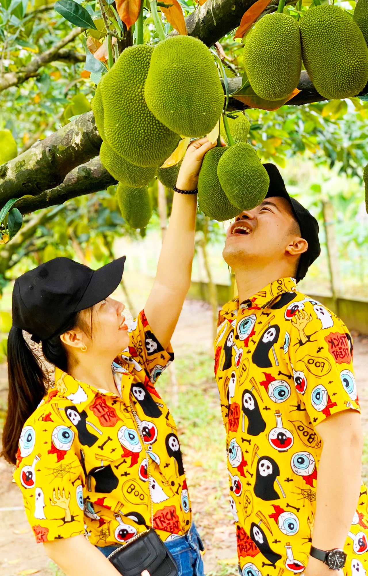 Vườn trái cây 3 Cống trĩu quả mùa trái cây